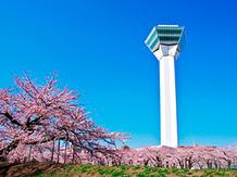センティール・ラ・セゾン 函館山 【ロケーション】函館の季節を感じる画像2-3