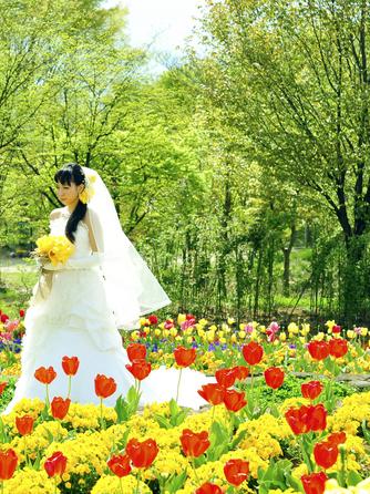 HEIDI'S VILLAGE 花の教会 ロケーション1画像1-2