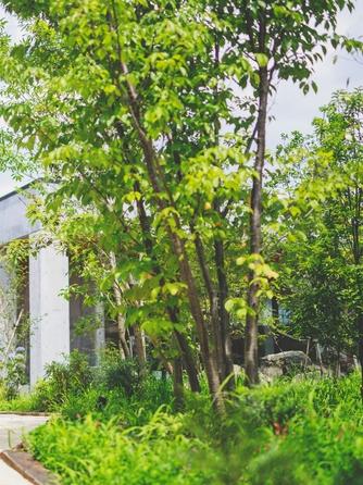 迎賓館ヴィクトリア福井&ヴィクトリアフォレスト 教会での本格挙式×小さな森の結婚式画像1-2