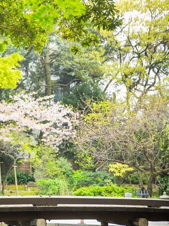 浮月楼 セレモニースペース(徳川慶喜公が愛した日本庭園)画像1-2