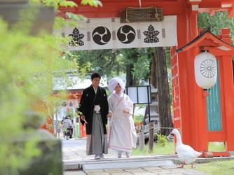 スタイリッシュウェディング ヴィーナスコート 佐久平 神社(生島足島神社)画像2-2