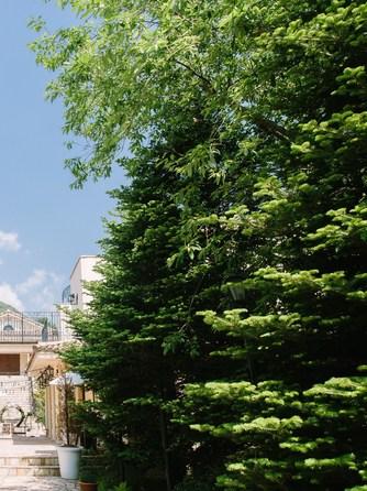 VILLAS DES MARIAGES 軽井澤(ヴィラ・デ・マリアージュ 軽井澤) セレモニースペース(|旅をしてでも訪れたい|祝福の降る町)画像1-2