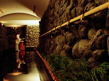 アピオ グランドステージ 神殿(出雲水上神殿)画像1-4