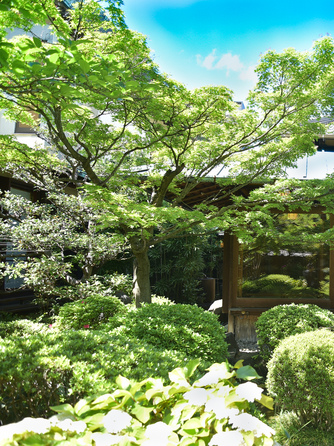 料亭 か茂免(かもめ) 庭園画像1-1