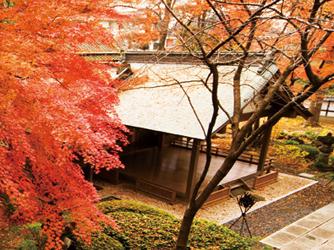 仙台 勝山館/SHOZANKAN 神殿(蔵舞台神殿)画像2-4