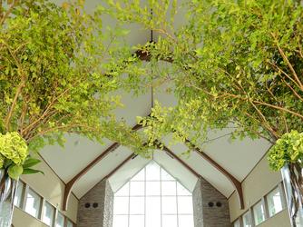 広島エアポートホテル フォレストヒルズガーデン 撮影スポット画像1-2