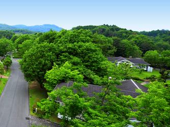 広島エアポートホテル フォレストヒルズガーデン 撮影スポット画像2-4