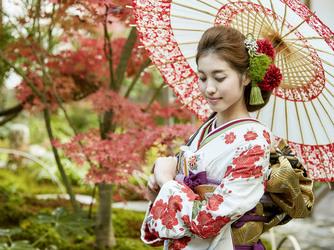 知多市指定文化財 尾張八幡神社 八幡の森迎賓館 その他画像2-2