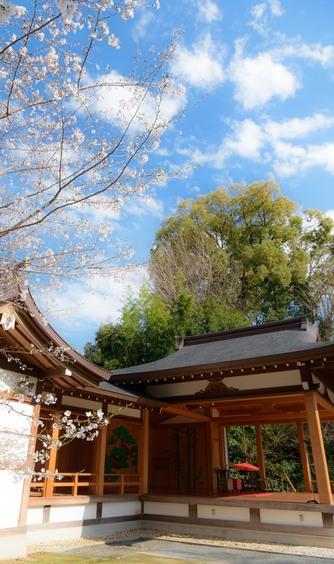 阿佐ヶ谷神明宮 神社(緑あふれる能楽殿での伝統的な挙式)画像2-1