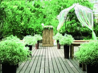 エレガンテヴィータ 光と緑につつまれるガーデンウェディング画像1-2