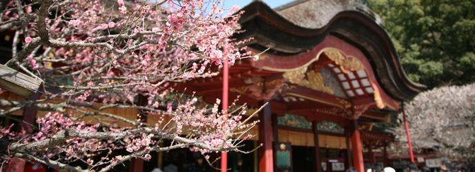 THE アルカディア太宰府 神社(太宰府近隣の神社 太宰府天満宮)画像1-1