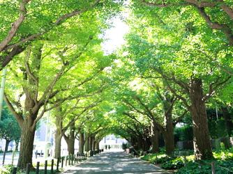 KIHACHI 青山本店 外観画像2-1