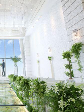 アルマリアン 福岡(ALMALIEN FUKUOKA) 開放感あふれる庭付きバンケがリニューアル画像1-2