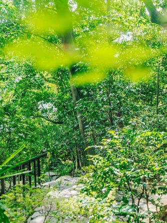 アカガネリゾート京都東山 (AKAGANE RESORT KYOTO HIGASHIYAMA) その他画像1-1