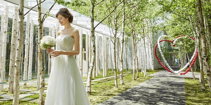 軽井沢ニューアート ウェディング 風通る白樺と苔の森チャペル:白樺の森と大地を覆う苔、木々を抜ける風…軽井沢の自然をたっぷり取り込んだチャペルは、世界的な建築家・隈研吾氏によるもの。