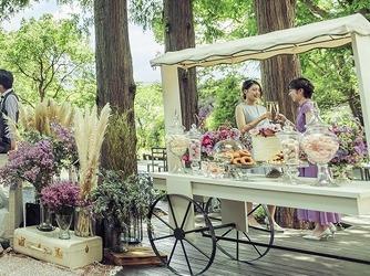 GRACE GARDEN THE ALBELLA(グレイスガーデン アルベラ) ガーデンゲストハウス #1組貸切#ガーデンw画像2-2