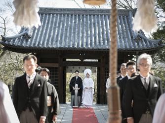 The 華紋(ザ カモン) 神社(阿智神社)画像2-3