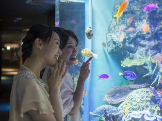 サンシャイン スカイブライダル セレモニースペース(サンシャイン水族館)画像1-3