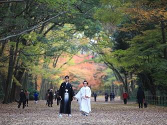 下鴨神社 神社(【世界文化遺産】下鴨神社)画像2-3