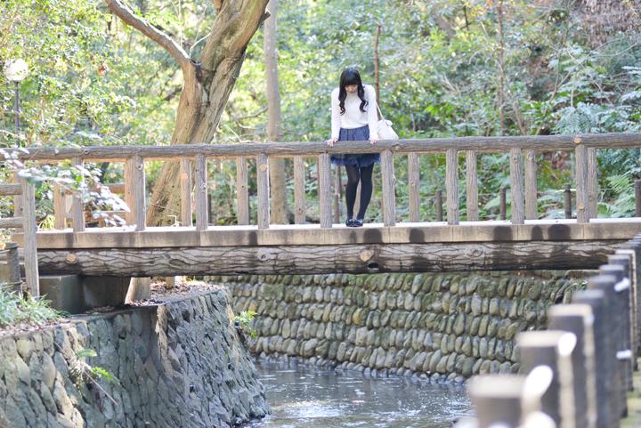 ◎検証2:自然たっぷりの「等々力渓谷公園