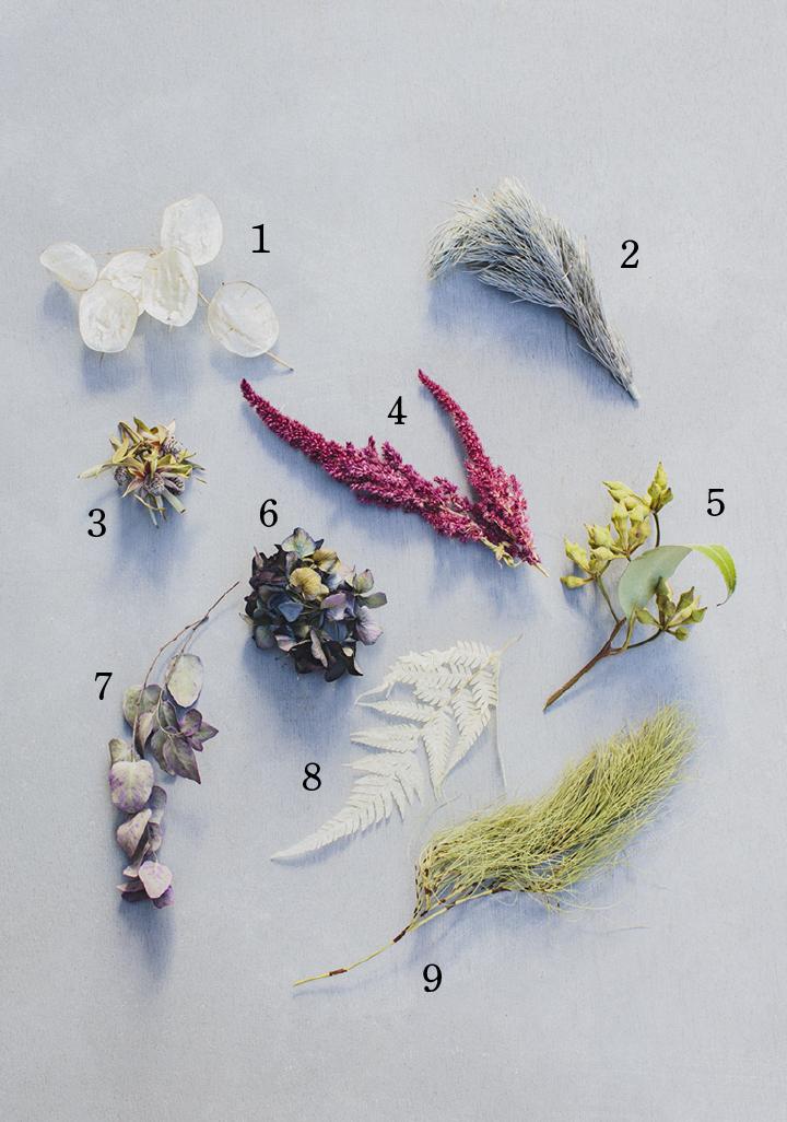 あきふゆのお花種類