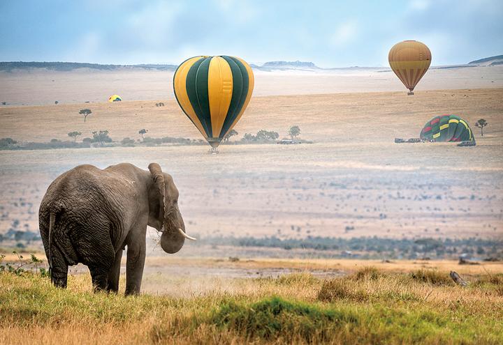 気球でサファリを空遊(ケニア)