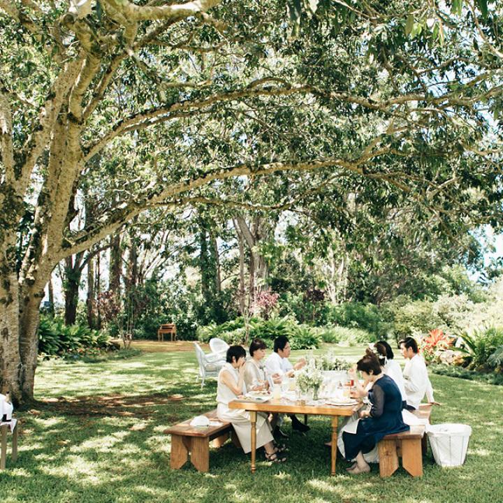 草原でピクニックランチ