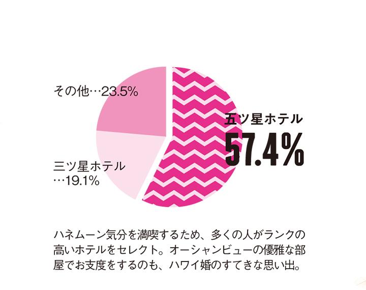 円グラフ 五ツ星ホテル滞在57.4% 三ツ星ホテル19.1% その他23.5%