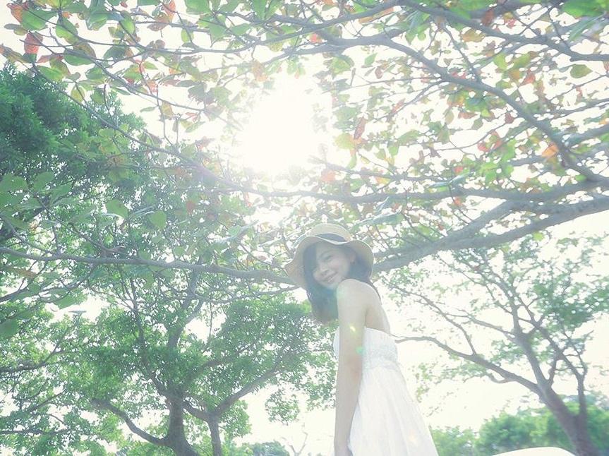 [沖縄]木漏れ日が生み出す光の魔法