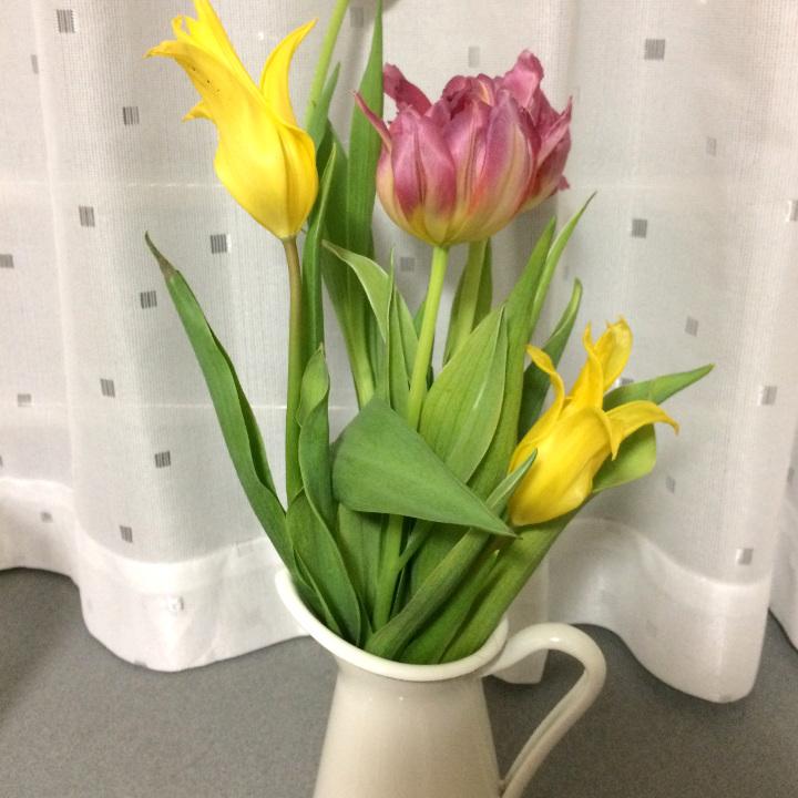 334150さんのお写真。花瓶に飾ったお花