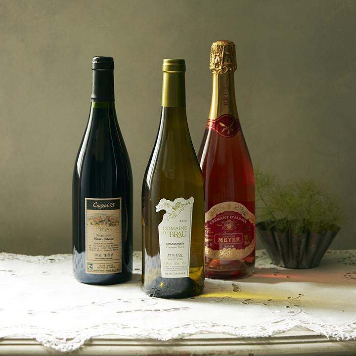 オーガニックワインイメージ