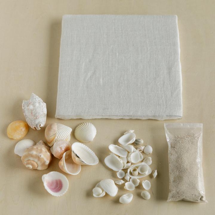 ファブリックボード、貝殻、砂