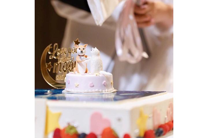 式テーマ表現一段ケーキ