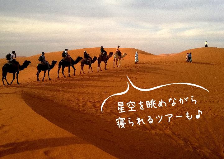 砂漠をラクダに乗って巡ろう