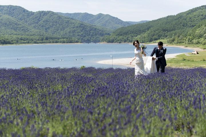 湖畔のラベンダー畑の中をドレスの裾を持ちながら花嫁の後ろを新郎が歩くふたり