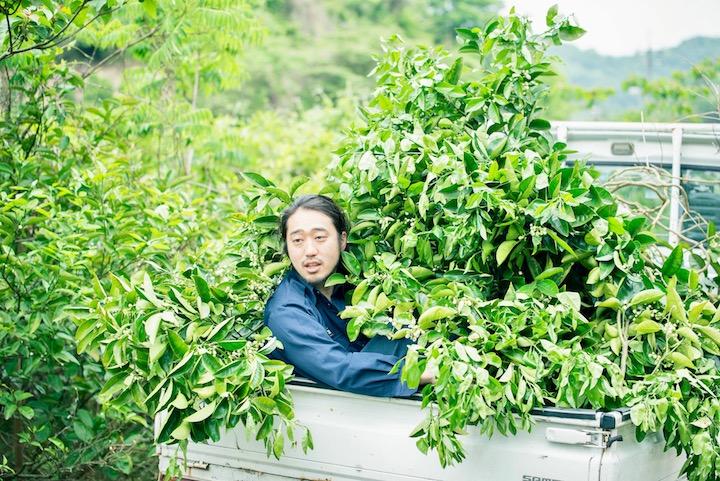 トラックに緑の木々がてんこ盛り。式前日、スタッフたちは装花用に島の木々を刈り取る作業を行った。手入れが行き届かない山奥の木を使わせてもらうことで、コストを抑えられた